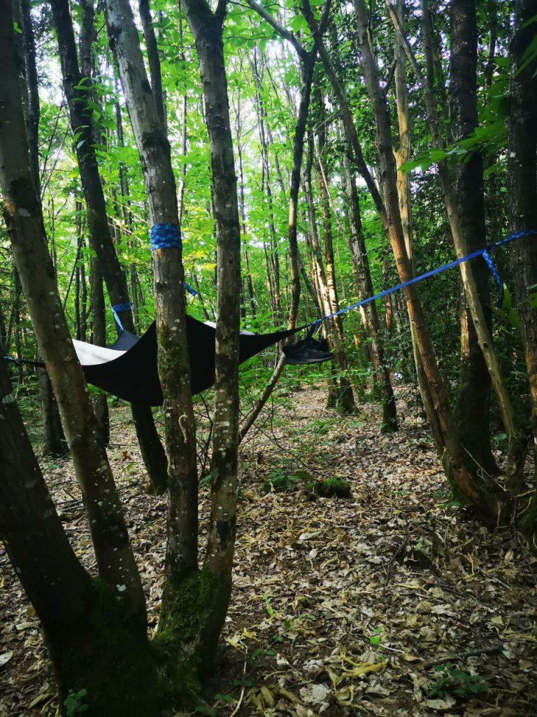 hamac dans les arbres